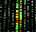 Study shows potential of whole genome sequencing and AI to help clinicians scale precision oncology