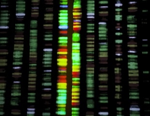 Genomic sequencing to provide precision medicine for aromatase deficiency