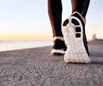 Exercise performed in the morning and evening may have different effects