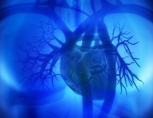 Brain function does not die immediately after the heart stops finds study