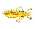 FDA accepts Topaz's ivermectin NDA for treatment for head lice infestations