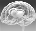 New drug delivery system by Renishaw hopes to aid Parkinson's treatment