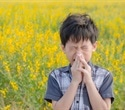 Large international study finds new risk genes for hay fever
