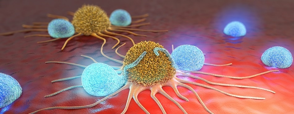 Study reveals link between cancer relapse and body's immune system