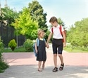 Exposure to air pollution on route to school can decrease working memory growth, study reveals