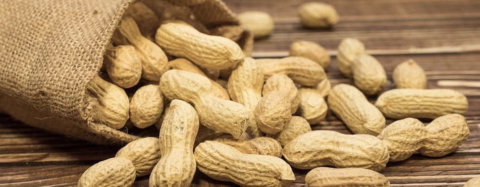 Skin patch offers hope for people with peanut allergy