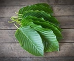 FDA issues warning against use of herbal medicine Kratom
