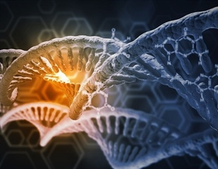 Genetic Risk Associated with Social Anxiety