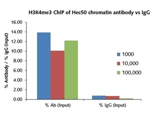 Chromatin immunoprecipitation from 1000 cells