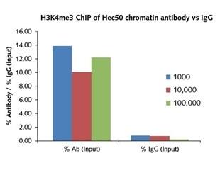 Chromatin immunoprecipitation from 1000 cells