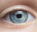 Tracking eye movements offers new method for monitoring temporal expectation in ADHD