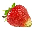 Strawberry extract can inhibit spread of breast cancer cells, mice study shows