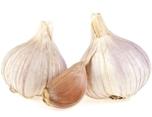 Aged garlic extract may help obese people fight against inflammation, study shows
