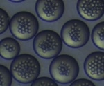 Particle Works offers wide range of nano- and microparticle materials with exceptional precision