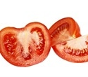 New method tags breast implants with tomato DNA to prevent counterfeiting