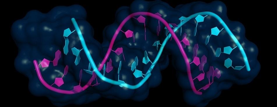 Targeting RNA repeats