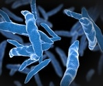 Scientists identify genetic changes during infection by tuberculosis