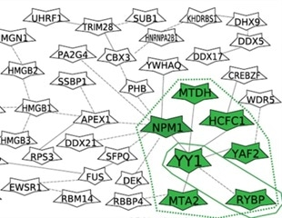 Proteomics unravels molecular mechanisms influenced by genetic variations