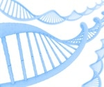Five significant genetic associations for hypothyroidism found