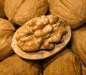 Walnut-enriched diet may improve sperm quality, animal research suggests
