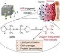 Researchers develop hybrid nanomaterial for destruction of cancer cells