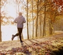 Running mitigates negative impacts of chronic stress on the brain, study finds