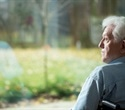 Could human lifespan exceed 115 years?