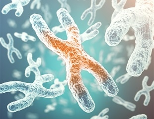 UCLA scientists discover reason for higher rates of autoimmune disease in women than men