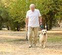 Dog ownership provides many health benefits for seniors