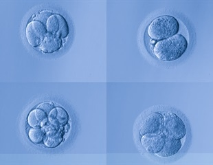 US scientists make advances in modifying human embryos