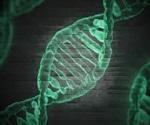 Dmrta2 gene mutation can lead to abnormal brain development in unborn babies