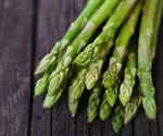 Genetics of Asparagus Smell in Urine