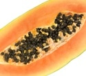 Multistate Salmonella outbreak linked to Maradol Papaya: CDC reports