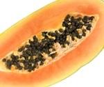 Multistate Salmonella outbreak linked to Maradol Papaya: CDC reports