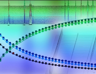 Using Online NMR Reaction Monitoring to Understand Mechanisms and Kinetics of Chemical Reactions