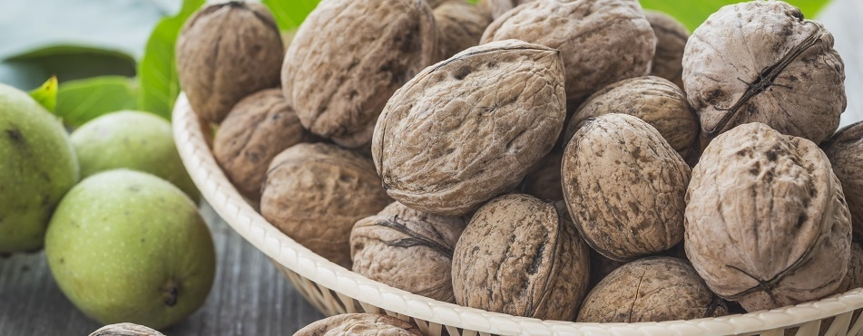 Walnuts reduce hunger by activating a certain brain region, say researchers