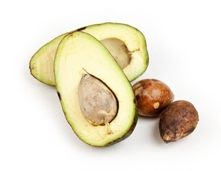 Study reveals possible medical and industrial properties of avocado seed husks