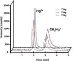 Detection of Mercury and Methylmercury using IC-ICP/MS Method