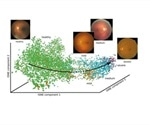 Scientists develop new method to reconstruct biological processes using image data