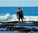 Surfers more likely to get antibiotic resistant E. coli in their guts