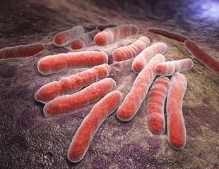 Study suggests vitamin C enhances tuberculosis drugs effectiveness