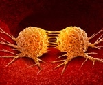 Scientists uncover key regulator of mTORC1 in cancer growth
