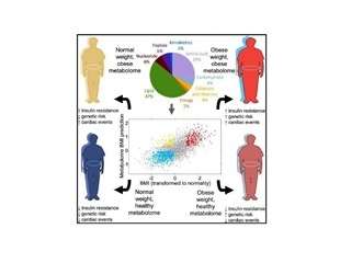 Metabolome tests could be new way to measure obesity and health