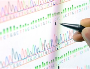 Scientists decode the longest ever continuous DNA sequence