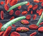 War against Malaria plateaued worldwide says latest report