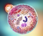 Autophagy of dendritic cells supports T-cell anticancer activity