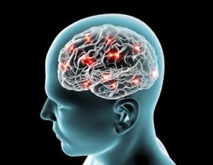 Autoimmune Encephalitis Pathophysiology