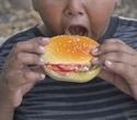 Obesity among kids still high finds new survey report