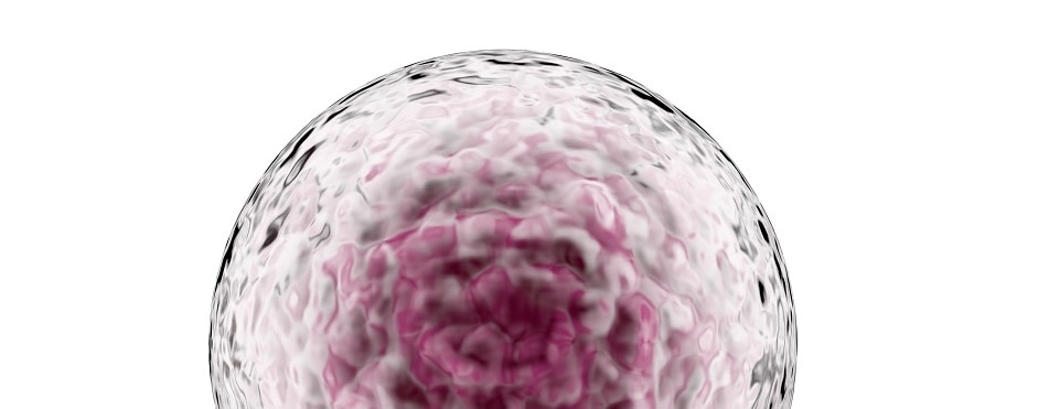 Stem cell vaccine helps protect mice against numerous cancers, study finds