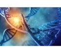 AMSBIO's MC-Easy minicircle technology allows sustained transgene expression in quiescent cells and tissues